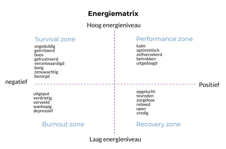 energiematrix als ondernemer